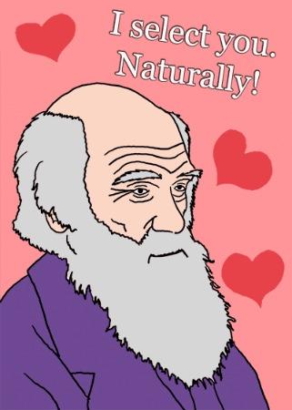 valentine-darwin